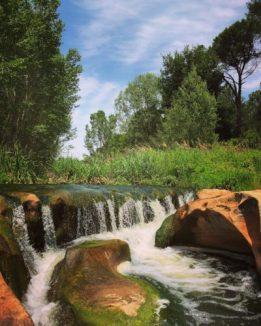 hort river