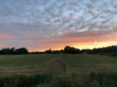 hort sunset